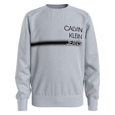 Calvin Klein Boys Pz2 Grijs