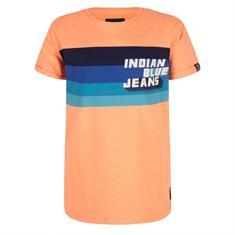 Indian bl. b IBB19-3640 Oranje