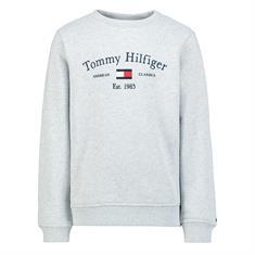 Tommy Hilfiger Boys P01 Grijs