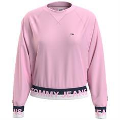 Tommy Jeans DW0DW08979 Roze